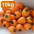 日本一の生産地愛媛丹原のあたご柿 干し柿用渋柿 10kg 28個から50個