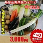 新鮮 野菜 詰め合わせ セット ♪九州 島原発 送料無料 定番野菜含む12種類 ナオヤおまかせセット★たまご も追加できます 産地直送