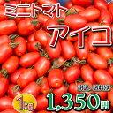 ミニトマト アイコ 九州発 長崎 島原半島産 松本さんちのミニトマト アイコ 1kg(500g×2袋) 完熟 で収穫後に発送します。 リコピン たっぷり フルー...