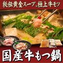 九州発 ナオヤ店長おすすめ もつ鍋セット 2〜3人前 送料無料 一度食べたら癖になります♪お家でどうぞ本場の味を楽しんでください★