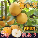 【訳あり】藤原さんちの梨 農家直送 新高 ご自宅用 5kg...