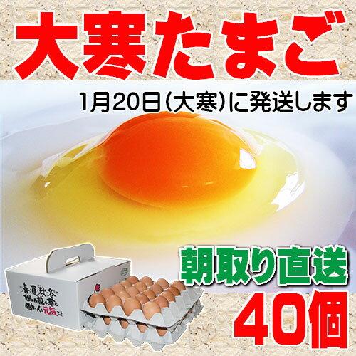 大寒たまご 40個 送料無料 縁起卵 数量限定 1年に1度の希少な大寒タマゴ