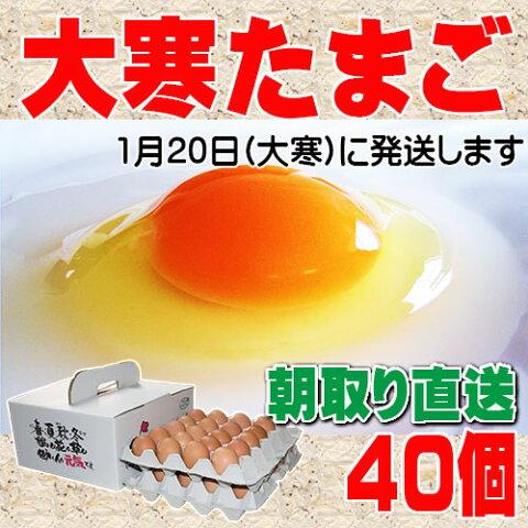 ポイント2倍 大寒たまご 40個 送料無料 縁起卵 数量限定 1年に1度の希少な大寒タマゴ スーパーポイントDAY
