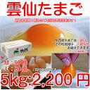 雲仙 たまご 5kg 箱入り (L:80個 M:90個 MS:108個) 究極のたまご 2箱まで同梱できます 卵 卵かけご飯 高級卵 九州 新…