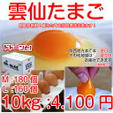 雲仙 たまご 10kg 箱入り (M:180個 L:160個から選べます) 卵かけご飯 ゆで玉子 な