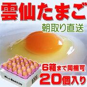 雲仙 たまご 20個 Lサイズ 送料無料 卵 卵かけご飯 高級卵 九州 新鮮 生卵 TKG もみじたまご 鶏卵 アレルギー 〜1.9kg お持たせ お返し お歳暮