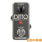 TC Electronic Ditto Looper コンパクトエフェクター 【ルーパー】 【TC エレクトロニック】