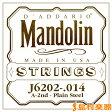 D'Addario J6202 マンドリン弦 Mandolin Family 80/20 Bronze 014 【バラ弦1本】 【ダダリオ】