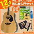 Vanguard VDG-01 NA ベーシックセット アコースティックギター 初心者セット 【バンガード】【オンラインストア限定】