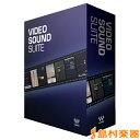 WAVES Video Sound Suite 【ウェーブス】[メール納品 代引き不可]