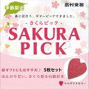 島村楽器 サクラピック ヤエザクラ 5枚セット 【ShimamuraMusic】【数量限定】