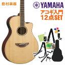 YAMAHA APX600 NT アコースティックギター初心者12点セット 【ヤマハ】【オンラインストア限定】