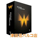 WAVES プラグインソフト Broadcast & Production バンドル 【ウェーブス】【津田沼パルコ店】