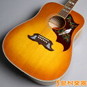 Gibson DOVE QUILT MAPLE アコースティックギター(エレアコ) ダブ 【ギブソン】【未展