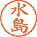 【シヤチハタ】 ネーム6既製 XL-6 1866 水島