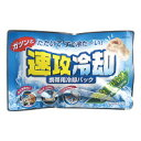 【紀陽除虫菊】 速攻冷却 冷却パック K-2001 入数:1 ★お得な10個パック★