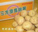 静岡県産三方原馬鈴薯【北あかり】 約10K箱 【送料無料-0621】ホクホクの馬鈴薯をお
