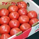 静岡産アメーラトマト約1K箱噛み締める毎