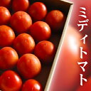 群馬県産ブリックスナインフルーツトマト約