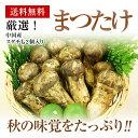 中国産松茸中ツボミHAM 約1K箱スダチも2個入り【送料無料】7月下中より発送予定です