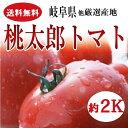 岐阜・福井県産桃太郎トマト約2K箱《サイズ指定なし》【送料無料】