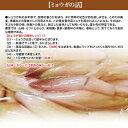 高知県産 旬のお野菜詰め合わせ 16〜18品目 新鮮 野菜詰め合わせ 送料無料 高知県室戸市から直送