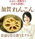 《予約》【加賀伝統野菜】加賀レンコン約300gパック【天ぷら...