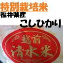 【特別栽培米】越前こしひかり【清水米】 10K袋【MB-KP】【送料無料】【smtb-T】