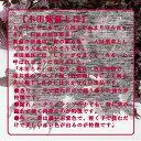 福井ちそサイダ- 画像2