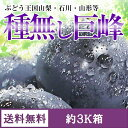 山梨・長野県種なし巨峰 約3K箱【送料無料-クール】7月下旬から順次発送
