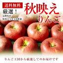 長野産【秋映え】りんご特秀大玉8玉化粧箱【送料無料】