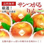 青森・長野産サンつがるりんご約5K秀大玉14〜18玉化粧箱【送料無料】