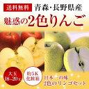 《約5K箱》青森・長野産富士リンゴ(サンフジ)(秋映)等赤色...