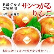 B級グルメご家庭用青森・長野産りんご【サンつがる】約3K箱【送料無料】