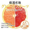 グレープフルーツ【ホワイト&ルビー】大玉5個ずつ計10個化粧箱
