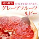 グレープフルーツ【ルビー】30個入り1ケース【送料無料】