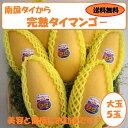 【完熟タイマンゴー】5玉入り化粧箱【送料無料】