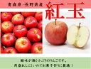 長野・青森産りんご【紅玉】14〜15玉箱【送料無料】