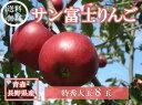青森・長野産サン富士りんご特秀大玉8玉化粧箱【送料無料】【お歳暮・贈答用に】