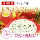 お試し企画!ベトナム産ドラゴンフルーツ 3玉入り化粧箱ほんのり甘酸っぱく、爽やかな味です。【送料無料】 【グルメ5_free】