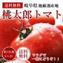 岐阜・福井産桃太郎トマト約4K箱【L〜2Lサイズ】【送料無料】