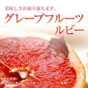 グレープフルーツ【ルビー】30個入り1ケース
