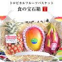 食の宝石箱【T】トロピカルフルーツバスケット【パイン+アップルマンゴー+ドラゴンフルーツ】等可愛い手提げ箱に入っています。《果..