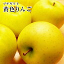 プチギフト黄色りんご【トキ】【きおう】【金星】【王林】【シナノゴールド】等黄色林檎たち5玉手提げ袋入り旬の時期に旬の品種を