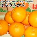 【はるみみかん】M〜2Lサイズ約3K箱静岡・愛知・和歌山・愛媛・広島県送料無料