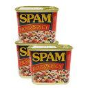 スパムホット&スパイシー 340g×3缶セット 新栄商店 スパムポーク 沖縄 スパムおにぎり 防災備蓄用 レターパック520発送