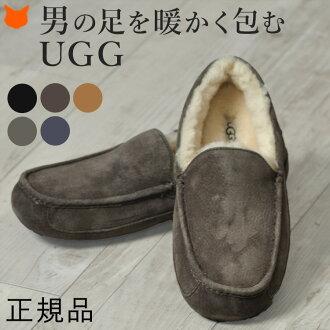 UGG ASCOT 冬季 男裝 真皮 毛絨 柔軟 輕便鞋 平底鞋 正規品 多色
