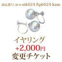 n-s-otk624-ftpb624-kam ピアス 変更チケット 2,000円