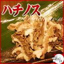 あっさり味で食べやすい!ハチノス 100g 【ホルモン】【あす楽対応】【冷凍発送】