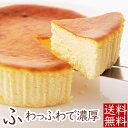 【ハロウィンギフト】濃厚!復活のチーズケーキ「KINUNOW...